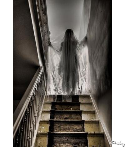 Ghost Lady Halloween Wedding Decoration Ideas