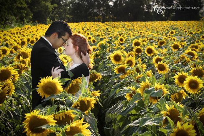 Chris and Chelsea Sunflower Wedding Anniversary Photos