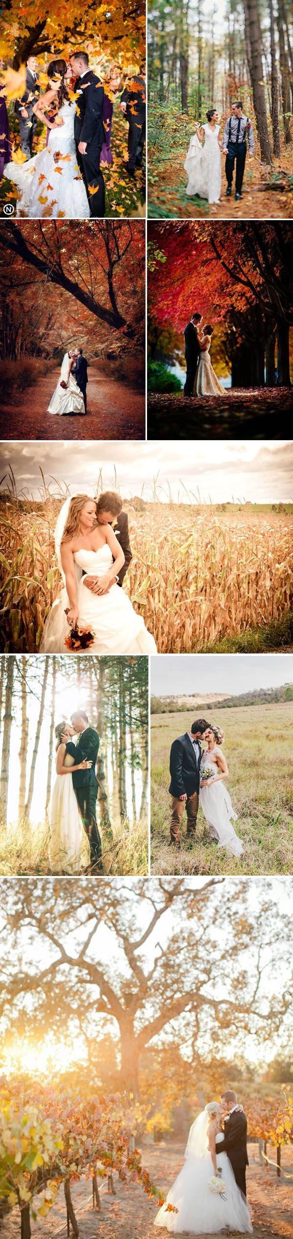 Fall Wedding Photos