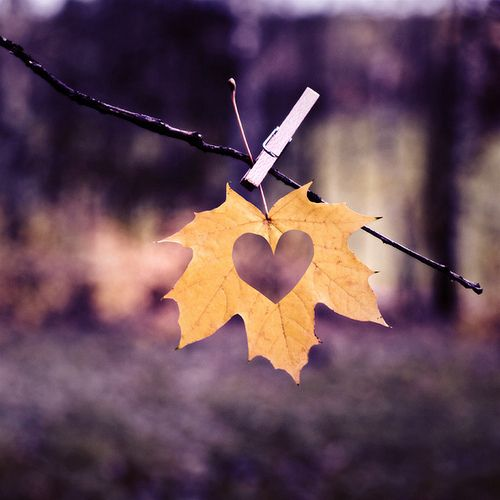 Heart Leaf Fall Wedding Idea