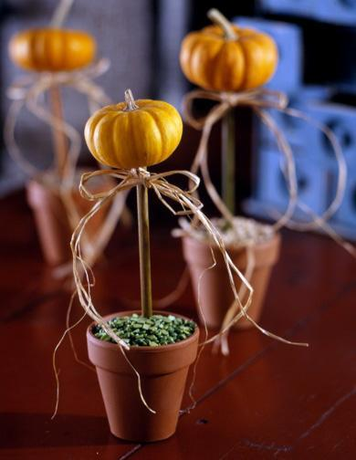 Pumpkin topiaries Fall Pumpkin Themed Wedding Decoration