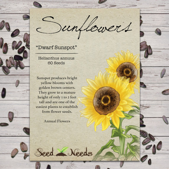 Sunflower Seed Packages Wedding Ideas