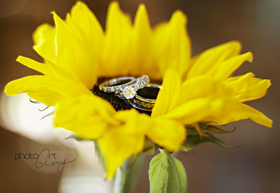 50 inspiring sunflower wedding ideas that wedding shop sunflower wedding ring photo shoot ideas junglespirit Gallery