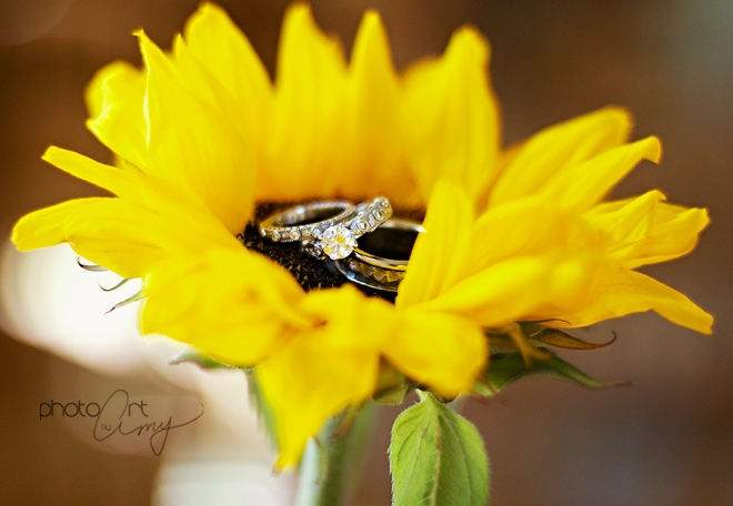 Sunflower Wedding Ring Photo Shoot Ideas